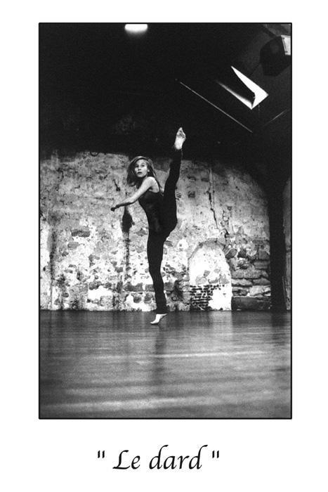 Marc Acquaviva - Le dard