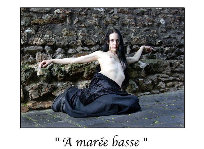 Marc Acquaviva - A marée basse